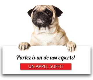 Parlez à un de nos experts! - Un appel suffit
